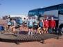 2013 alcazar 10km